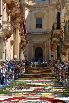 Crowds flock to see the carpet of flowers