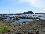 Aci Trezza - basalt rocks and harbour - Copy