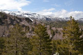 View fm Mt Sartorius